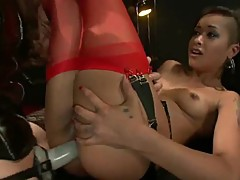 Two Sensuous harlots have Their buttholes got laid in 3some mov